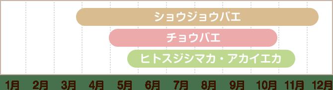活動周期カレンダー