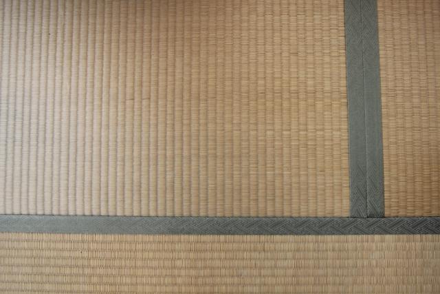 畳のカビを取る手順