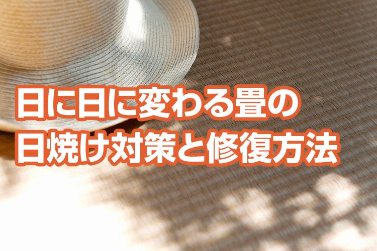 畳の日焼けを防ぎたい!畳の日焼け対策と修復・交換について紹介
